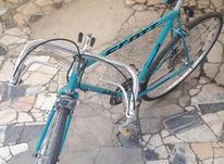 دوچرخه کورسی در شیپور-عکس کوچک