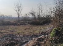 3000 متر زمین داخل طرح هادی در چهارده در شیپور-عکس کوچک
