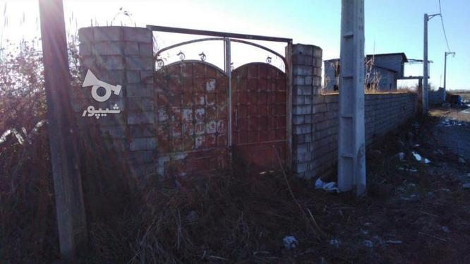 زمین مسکونی الحاق به بافت 600 متر  در گروه خرید و فروش املاک در مازندران در شیپور-عکس1