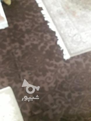 فرش فروش فوری . در گروه خرید و فروش لوازم خانگی در مازندران در شیپور-عکس2