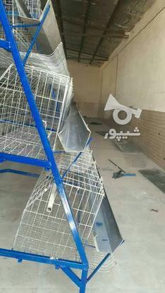 قفس منبری مرغ تخم گذار چهار طبقه در حد نو در گروه خرید و فروش صنعتی، اداری و تجاری در مازندران در شیپور-عکس1