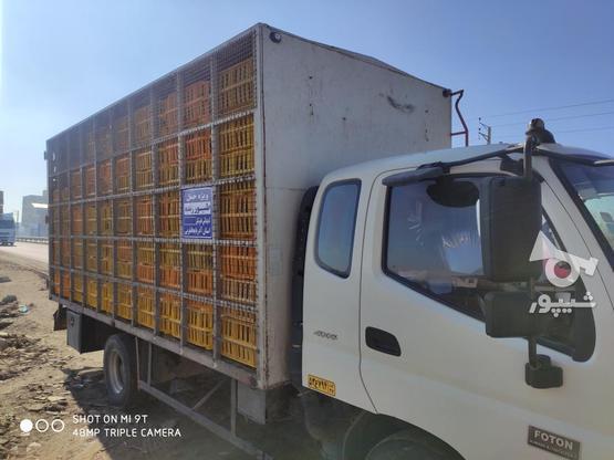 یک اوتاق مرغی  80درصد همش سه سال کارکرده در گروه خرید و فروش وسایل نقلیه در آذربایجان غربی در شیپور-عکس1