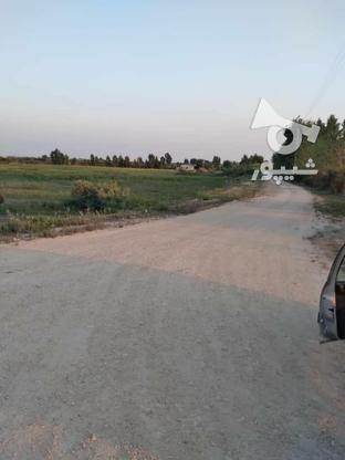 زمینی ب متراژ210 متر شهرکی سنددار درساری جاده پلاژ در گروه خرید و فروش املاک در مازندران در شیپور-عکس1