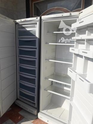 یخچال فریزر ولباسشویی اتومات در گروه خرید و فروش لوازم خانگی در خراسان شمالی در شیپور-عکس7