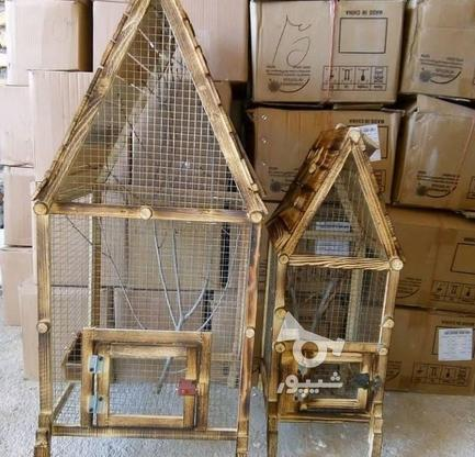 نشیمنگاه پرنده ولانه  در گروه خرید و فروش خدمات و کسب و کار در گیلان در شیپور-عکس7