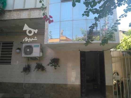 سه طبقه مستقل طبقات تک واحدی با سند یکجا در گروه خرید و فروش املاک در مازندران در شیپور-عکس3