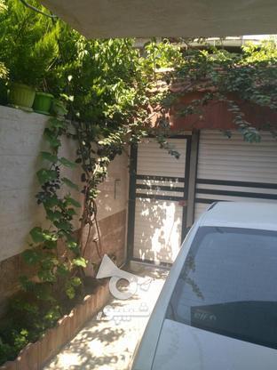 سه طبقه مستقل طبقات تک واحدی با سند یکجا در گروه خرید و فروش املاک در مازندران در شیپور-عکس4