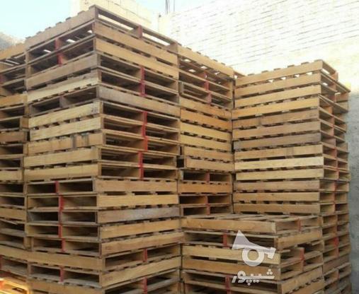 خرید و فروش پالت چوبی و ضایعات تخته پالت سه لایی نوپان وغیره در گروه خرید و فروش خدمات و کسب و کار در تهران در شیپور-عکس3