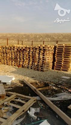 خرید و فروش پالت چوبی و ضایعات تخته پالت سه لایی نوپان وغیره در گروه خرید و فروش خدمات و کسب و کار در تهران در شیپور-عکس2