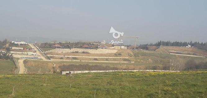 فروش زمین،باغ در گروه خرید و فروش املاک در مازندران در شیپور-عکس6