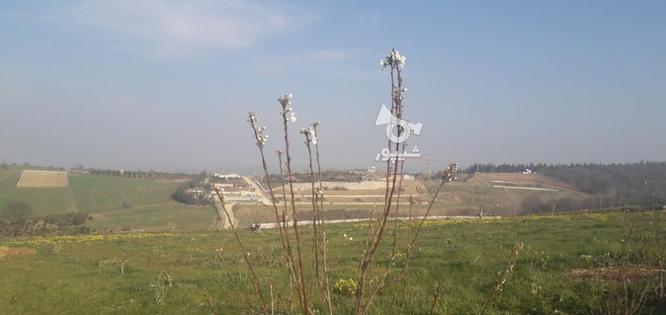 فروش زمین،باغ در گروه خرید و فروش املاک در مازندران در شیپور-عکس2