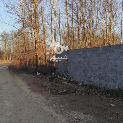 960 متر زمین مسکونی سنددار در کیسم در گروه خرید و فروش املاک در گیلان در شیپور-عکس1