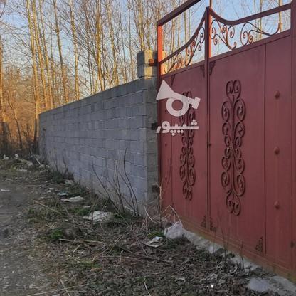 960 متر زمین مسکونی سنددار در کیسم در گروه خرید و فروش املاک در گیلان در شیپور-عکس4