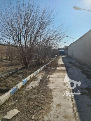 8500 متر چاردیواری  در گروه خرید و فروش املاک در تهران در شیپور-عکس3