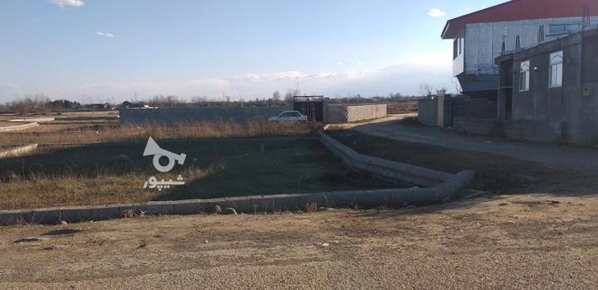 زمین مسکونی دوقطعه واقع در فاز بهداشت فروش فوری در گروه خرید و فروش املاک در گیلان در شیپور-عکس1