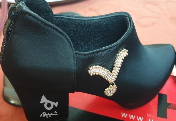 کفش چرمی زنانه زیپدار مجلسی با طرح در گروه خرید و فروش لوازم شخصی در اصفهان در شیپور-عکس3