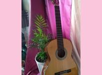 گیتار 4/4 نو در شیپور-عکس کوچک