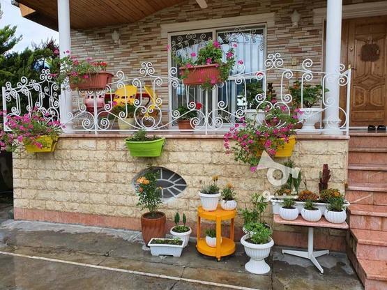 فروش ویلا متل قو شهرکی 240 متری. در گروه خرید و فروش املاک در مازندران در شیپور-عکس2