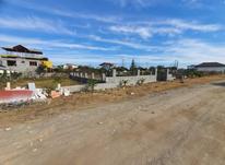 فروش زمین مسکونی 350 متر در نشتارود در شیپور-عکس کوچک