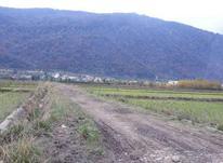 فروش زمین محدوده نمک آبرود 1350 متری با بهترین چشم انداز. در شیپور-عکس کوچک