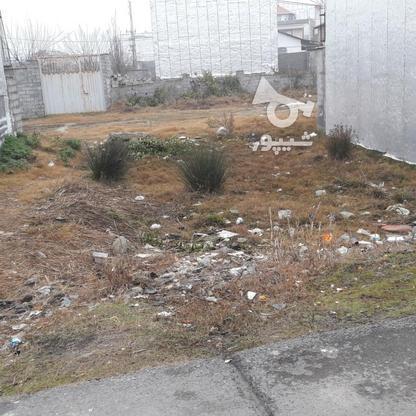 فروش زمین مسکونی 135 متر در بلوار بسیج بابلسر در گروه خرید و فروش املاک در مازندران در شیپور-عکس1