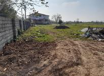 زمین باغی 318 متر در روستای شهرستان در شیپور-عکس کوچک