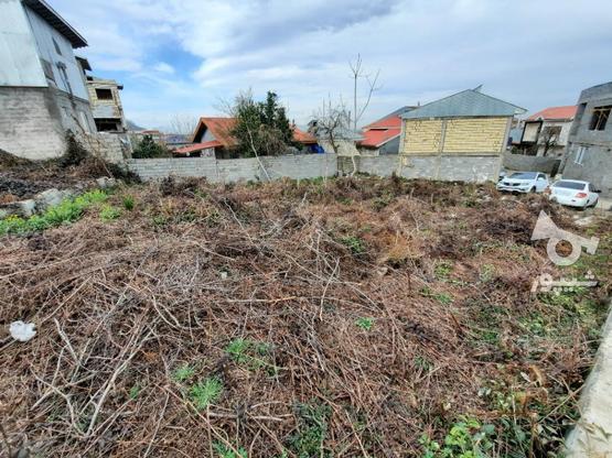 فروش زمین مسکونی 390 متر در لاهیجان در گروه خرید و فروش املاک در گیلان در شیپور-عکس3