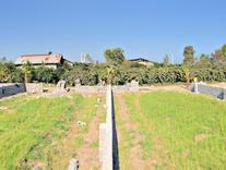 زمین مسکونی  در شیپور
