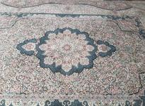 فرش 12 متری ساوین در شیپور-عکس کوچک