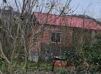 1000متر زمین در وارد محله در شیپور-عکس کوچک