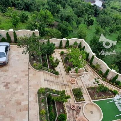 کاخ ویلا 650متری پلاک یک جنگل در گروه خرید و فروش املاک در مازندران در شیپور-عکس4
