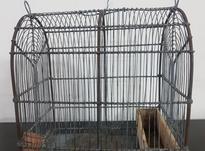 قفس دست ساز سهره و قناری در شیپور-عکس کوچک