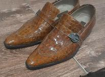 کفش مجلسی سایز 42 در شیپور-عکس کوچک