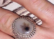 انگشتر دست ساز نقره ای شجر در شیپور-عکس کوچک
