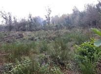 زمین روستایی داخل طرح در شیپور-عکس کوچک