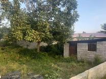 فروش زمین مسکونی 302 متر در تالش در شیپور