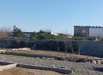 فروش زمین مسکونی 116 متر در جاده بابل بهنمیر در شیپور-عکس کوچک