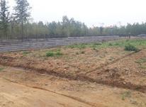 زمین روستایی باغات در شیپور-عکس کوچک