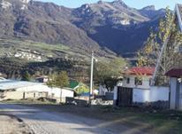 1400 متر زمین واقع در روستای کوهستانی بی نظیر لنگر در شیپور-عکس کوچک