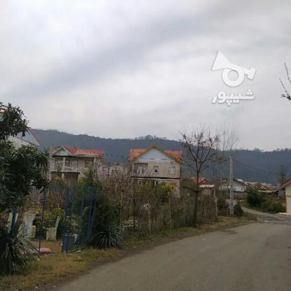 فروش زمین مسکونی تجاری 710 متری در کوی سوستان لاهیجان در گروه خرید و فروش املاک در گیلان در شیپور-عکس2