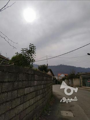 فروش زمین مسکونی تجاری 710 متری در کوی سوستان لاهیجان در گروه خرید و فروش املاک در گیلان در شیپور-عکس5