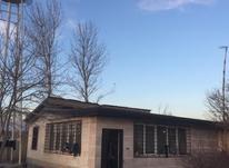 فروش زمین مسکونی 1300 متر در هشتگرد قدیم در شیپور-عکس کوچک
