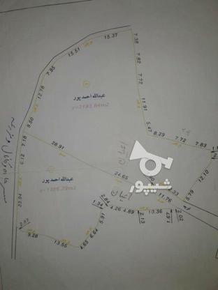 فروش زمین مسکونی 3800 متر در لاهیجان در گروه خرید و فروش املاک در گیلان در شیپور-عکس7