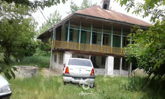 فروش زمین مسکونی 3800 متر در لاهیجان در گروه خرید و فروش املاک در گیلان در شیپور-عکس4