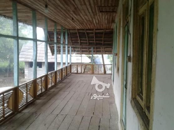 فروش زمین مسکونی 3800 متر در لاهیجان در گروه خرید و فروش املاک در گیلان در شیپور-عکس3