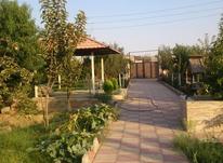فروش ویلا 1200 متر در ورامین در شیپور-عکس کوچک