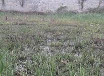 فروش زمین مسکونی 150 متر در ایزدشهر در شیپور-عکس کوچک