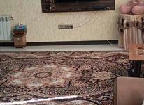 آپارتمان 65 متر با آسانسور در بلوار بهشتی  در شیپور-عکس کوچک