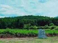 فروش زمین 200متری  در شیپور-عکس کوچک