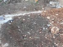 زمین90متری در شیپور-عکس کوچک